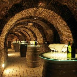 Party Bus Winery Tours